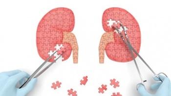 Böbrek Hastalıklarının Nedenleri ve Tedavisi