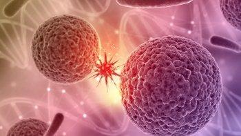 Onkoloji Ne Tür Hastalıklara Bakar?