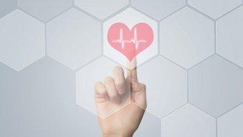 Kardiyoloji Hangi Hastalıklara Bakar?
