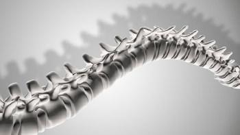 Kemik Yoğunluğu Ölçümü Nedir?