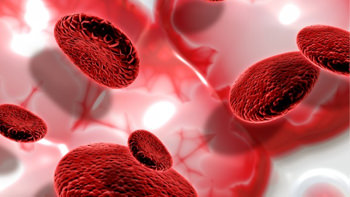 PRP Uygulaması Nedir? Hangi Hastalıklarda ve Nasıl Uygulanır?